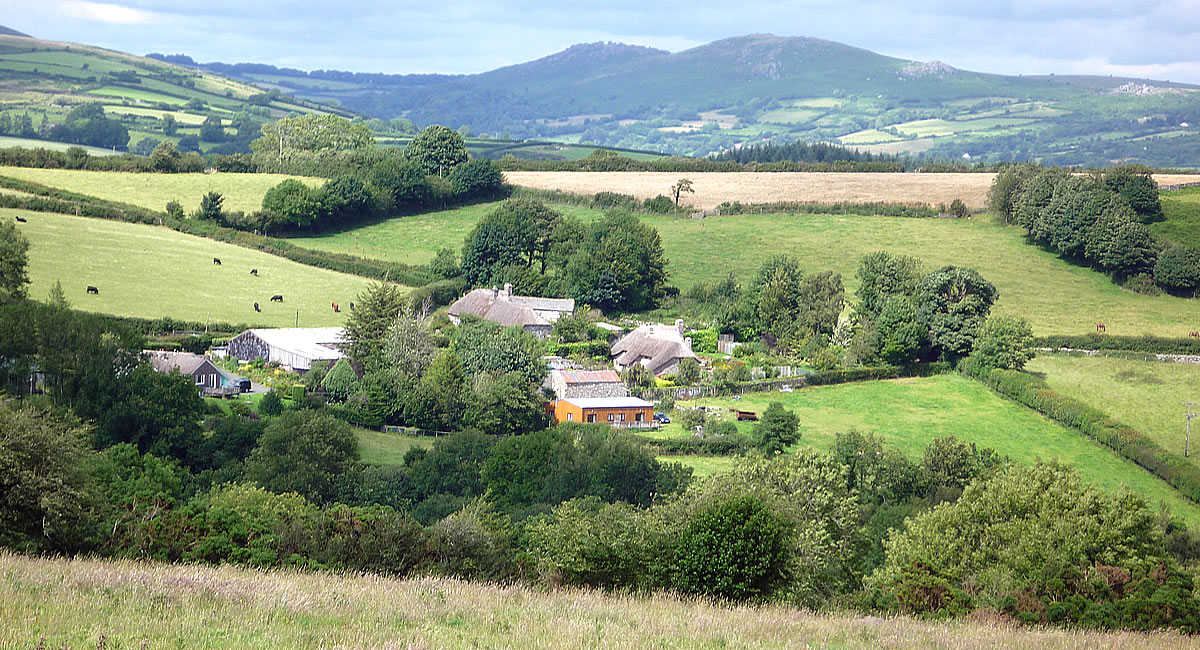 Mewcott Farm in the Devon Countryside